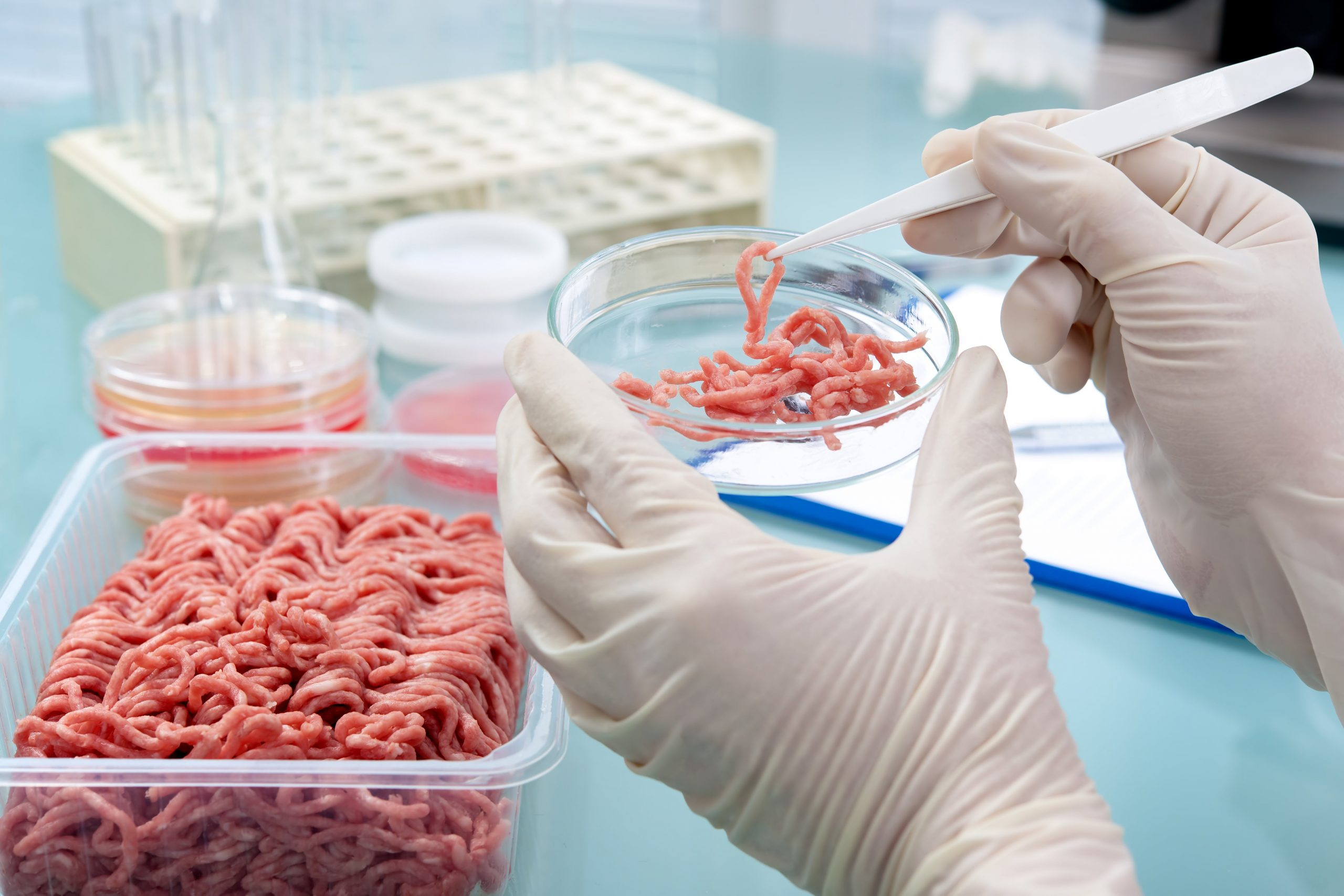Food Safety Contamination Meat